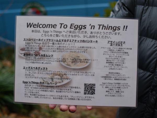 eggnthins12