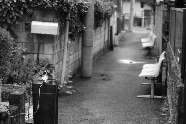 kanuma_20140816