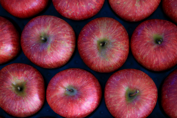 apple_20151220_02