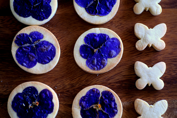 butterfly cookie_20160210