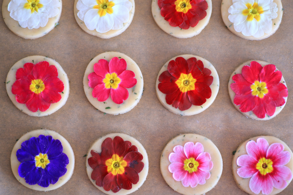 edible flower cookie_20160207_02