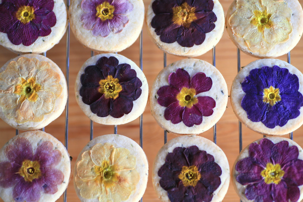 edible flower cookie_20160207_03