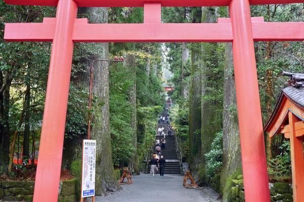 箱根神社_20191124 - 8 / 8